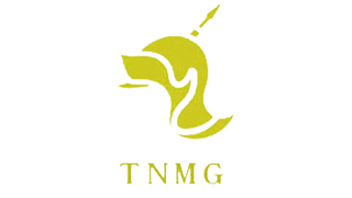 Tongling Nonferrous Metals Group Holdings Co., Ltd