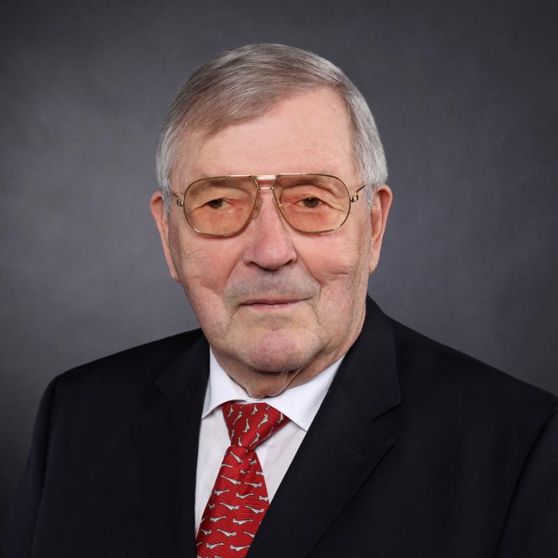 Carl Kramer - WSP GmbH